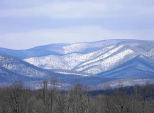 Appalachian Spring 2